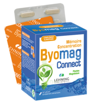 Lehning Byomag Connect Gélules B/60 à VANNES