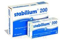 Stabilium 200, Bt 30 à VANNES