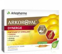 Arkoroyal Dynergie Ginseng Gelée Royale Propolis Solution Buvable 20 Ampoules/10ml à VANNES