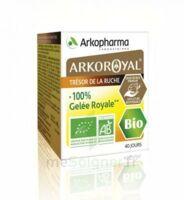 Arkoroyal 100% Gelée Royale Bio Gelée Pot/40g à VANNES