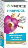 Arkogelules Harpagophyton Gélules Fl/150 à VANNES