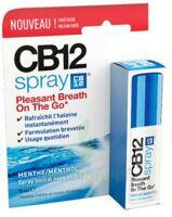 Cb 12 Spray Haleine Fraîche 15ml à VANNES