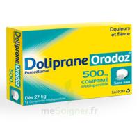 Dolipraneorodoz 500 Mg, Comprimé Orodispersible à VANNES
