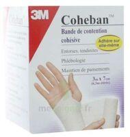 Coheban, Blanc 3 M X 7 Cm à VANNES