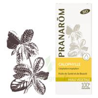 Pranarom Huile Végétale Bio Calophylle 50ml à VANNES