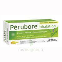 Perubore Caps Inhalation Par Vapeur Inhalation Plq/15 à VANNES