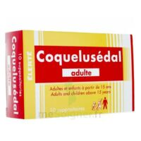 Coquelusedal Adultes, Suppositoire à VANNES