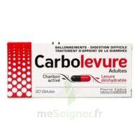 Carbolevure Gélules Adulte Plq/30 à VANNES
