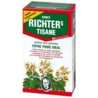 Ernst Richter's Tisane Poids Idéal 20 Sachets à VANNES
