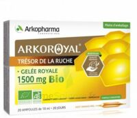 Arkoroyal Gelée Royale Bio 1500 Mg Solution Buvable 20 Ampoules/10ml à VANNES