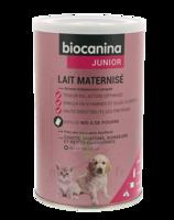 Biocanina Lait Poudre Maternisé B/400g à VANNES