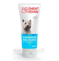 Clément Thékan Shampooing Poils Blancs T/200ml à VANNES
