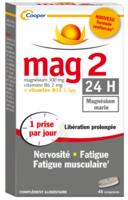 Mag 2 24h Comprimes B/45+15 Offert à VANNES