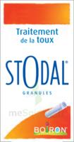 Boiron Stodal Granules Tubes/2 à VANNES