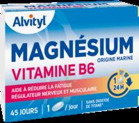 Govital Magnésium Vitamine B6 Comprimés B/45 à VANNES