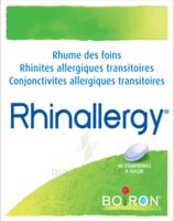 Boiron Rhinallergy Comprimés B/40 à VANNES