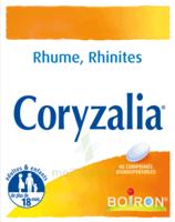 Boiron Coryzalia Comprimés Orodispersibles à VANNES