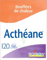 Boiron Acthéane Comprimés B/120 à VANNES